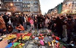 Người dân Brussels kiên cường sau vụ tấn công khủng bố