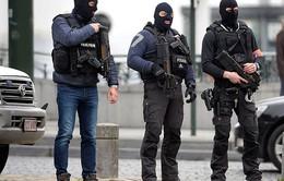 Bỉ bắt giữ 2 đối tượng tình nghi thực hiện âm mưu tấn công