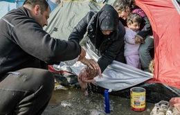 Xót xa em bé di cư sơ sinh phải tắm trong vũng nước bẩn tại Hy Lạp