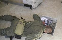 Thu giữ hơn 8 tấn cocain và cần sa ở đường hầm xuyên biên giới Mỹ - Mexico