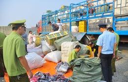 Quảng Trị: Liên tiếp phát hiện 3 vụ buôn lậu