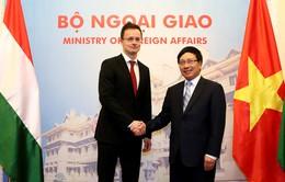 Hungary sẽ nỗ lực là nước đầu tiên phê chuẩn FTA Việt Nam - EU