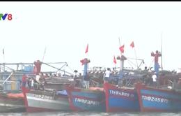 TT-Huế: Nhiều tàu cá nằm bờ do thiếu lao động