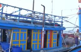 Cứu nạn thành công tàu cá cùng 10 ngư dân trôi dạt trên biển