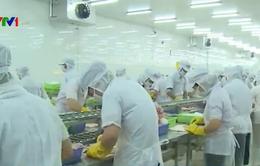Cảnh báo lừa xuất khẩu lao động sang Trung Quốc