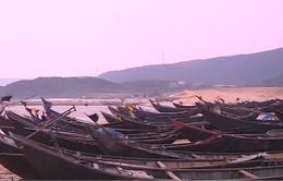 Bãi biển Hà Tĩnh im lìm sau hiện tượng cá chết hàng loạt
