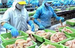 Mỹ nêu lý do cấm nhập khẩu lô cá da trơn từ Việt Nam