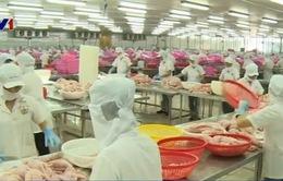 Brazil tăng nhập cá tra Việt Nam