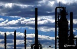 """Các nước dầu mỏ hàng đầu nhất trí """"đóng băng"""" sản lượng"""