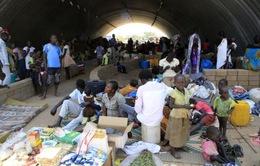 LHQ cảnh báo điều kiện sống tồi tệ của hơn 1 triệu người tị nạn
