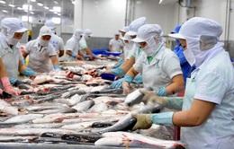 57 nhà máy chế biến cá da trơn Việt Nam đủ điều kiện XK vào Mỹ