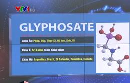 Nhiều quốc gia cấm sử dụng hoạt chất Glyphosate