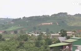 Nguyên nhân việc cán bộ bảo vệ rừng bị truy sát ở Lâm Đồng