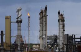 Canada mở rộng thị trường xuất khẩu dầu mỏ