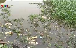 Thanh Hóa: Sẽ khởi tố vụ án hình sự xả thải gây ô nhiễm sông Bưởi