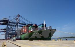 Đẩy mạnh khả năng hoạt động của cảng Cái Mép - Thị Vải