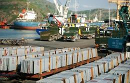 Cảng Quy Nhơn đầu tư 2.500 tỷ đồng tăng năng lực sản xuất