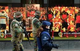 Cảnh sát Bỉ ráo riết truy lùng các đối tượng khủng bố
