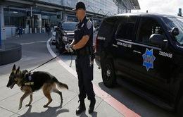 """Mỹ cảnh báo nguy cơ khủng bố """"nhãn tiền"""" ở châu Âu"""