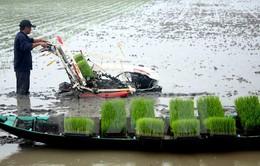 Phát thải nhà kính từ sản xuất nông nghiệp chiếm 50%