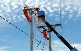 Cấp điện lưới quốc gia cho 1.500 hộ dân vùng sâu Cà Mau