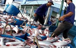 Mỹ công nhận 45 cơ sở chế biến cá tra của Việt Nam