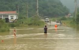 Cao Bằng: Mưa lớn, QL4 ngập sâu trong nước
