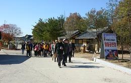 Có thể đình chỉ doanh nghiệp du lịch có khách trốn ở Hàn Quốc