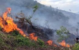 An Giang huy động trên 200 chiến sĩ tham gia chữa cháy rừng