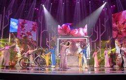 Đừng bỏ lỡ những chương trình đặc sắc dịp Tết Dương lịch 2017 trên VTV!