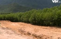 """""""Chất thải của Formosa chôn để phục vụ trồng trọt là điều không tưởng"""""""