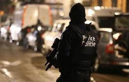 Châu Âu bắt giữ nhiều nghi phạm khủng bố