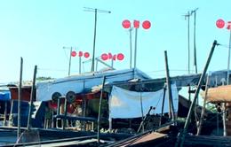 Độc đáo chậu nhựa giúp tạo điện gió ở xóm thuyền Hà Nội