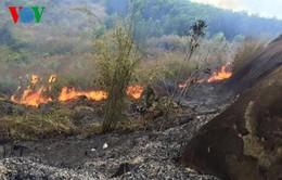 Một người bị thương khi tham gia chữa cháy rừng kinh hoàng ở Kỳ Sơn