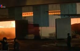 Gia Lai: Cháy dữ dội kho chứa, hàng chục nghìn tấn mì khô bị thiêu rụi