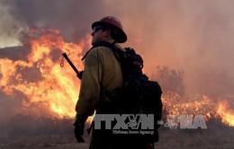 Mỹ: Thêm một vụ cháy rừng ở California