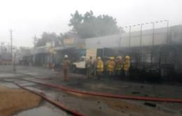 Ấn Độ: Cháy nhà máy pháo hoa, gần 20 người thương vong