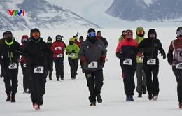 Sôi động cuộc thi chạy Marathon ở châu Nam Cực