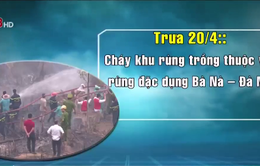 Cháy rừng xảy ra liên tiếp tại Đà Nẵng
