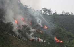 Nguy cơ cháy rừng ở các tỉnh miền núi phía Bắc