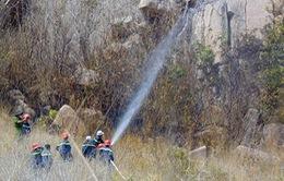 Báo động đỏ nguy cơ cháy rừng tại Bà Rịa - Vũng Tàu