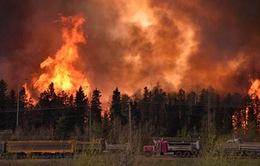 Canada: Cháy rừng tiếp tục hoành hành tại miền Nam Fort McMurray