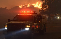 Mỹ: Hàng trăm cư dân sơ tán vì cháy rừng tại California