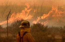 Mỹ nỗ lực khống chế cháy rừng ở bang California
