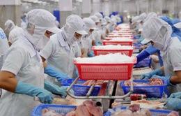 EU cảnh báo 11 lô hàng thủy sản của Việt Nam bị dư kim loại nặng