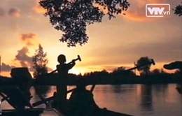 Mũi Cà Mau - khu Ramsar thứ 2088 của thế giới