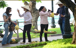 """Những lý do khiến khách du lịch """"phát hoảng"""" khi đến Việt Nam"""