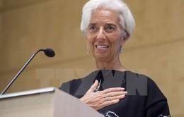 """IMF """"hoàn toàn tin tưởng"""" vào khả năng lãnh đạo của bà Lagarde"""