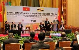 Chủ tịch nước dự Diễn đàn Doanh nghiệp Việt Nam - Brunei