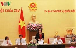 """""""Đảng và Nhà nước luôn quan tâm đến những hoạt động văn hóa, truyền thống của dân tộc"""""""